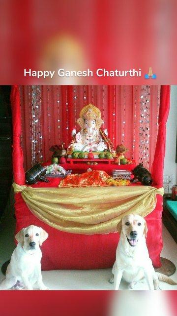 Happy Ganesh Chaturthi 🙏🏼